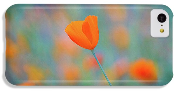 Flowers iPhone 5c Case - Spring Poppy by Anthony Michael Bonafede