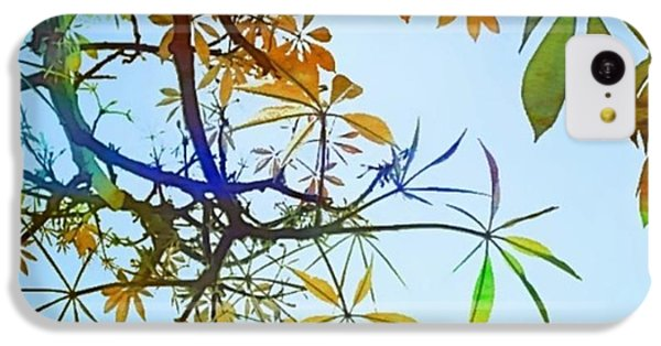 #spring #tree #leaves With #watercolor IPhone 5c Case by Shari Warren