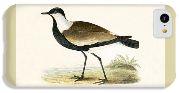 Spur Winged Plover IPhone 5c Case
