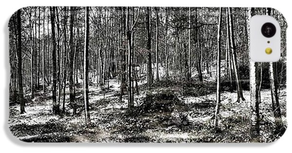 St Lawrence's Wood, Hartshill Hayes IPhone 5c Case
