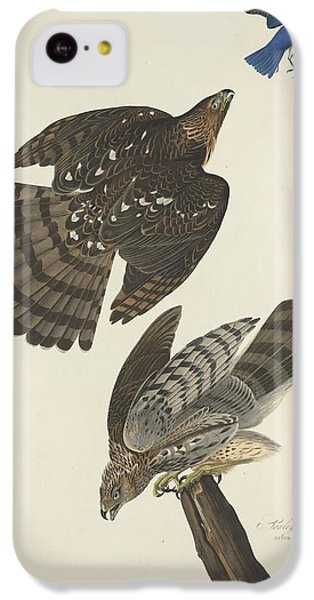 Stanley Hawk IPhone 5c Case by Dreyer Wildlife Print Collections