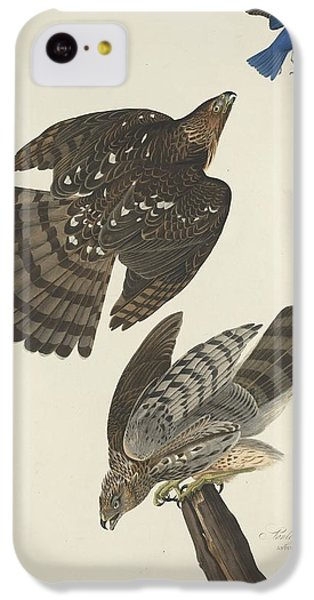 Stanley Hawk IPhone 5c Case by Rob Dreyer