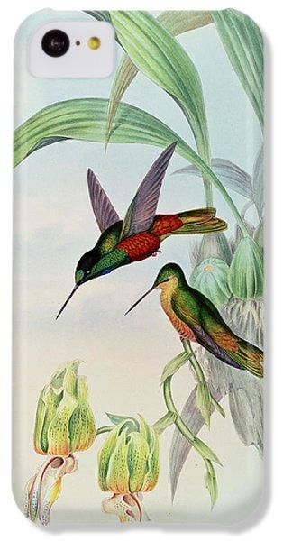 Humming Bird iPhone 5c Case - Star Fronted Hummingbird by John Gould
