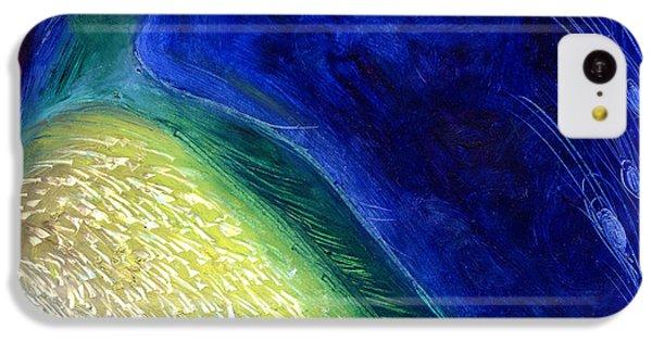 Starlight IPhone 5c Case by Nancy Moniz