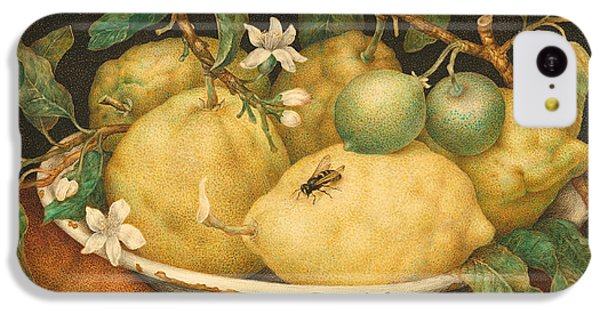 Still Life With A Bowl Of Citrons IPhone 5c Case