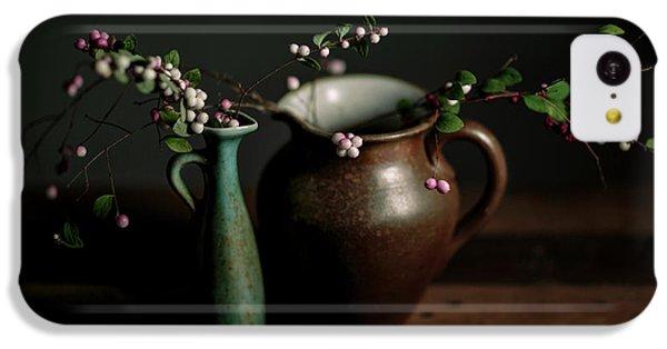 Fruit Bowl iPhone 5c Case - Still Life With Stoneware  by Nailia Schwarz
