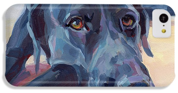 Animal iPhone 5c Case - Stretched by Kimberly Santini
