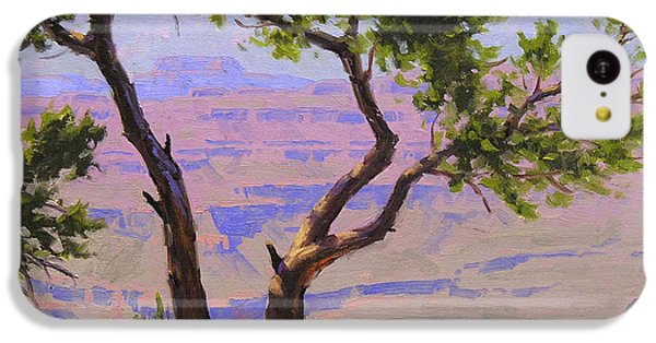 Grand Canyon iPhone 5c Case - Study For Canyon Portal by Cody DeLong