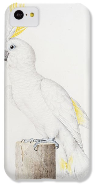 Sulphur Crested Cockatoo IPhone 5c Case
