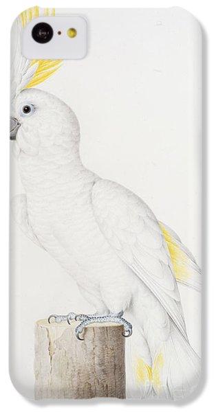 Sulphur Crested Cockatoo IPhone 5c Case by Nicolas Robert