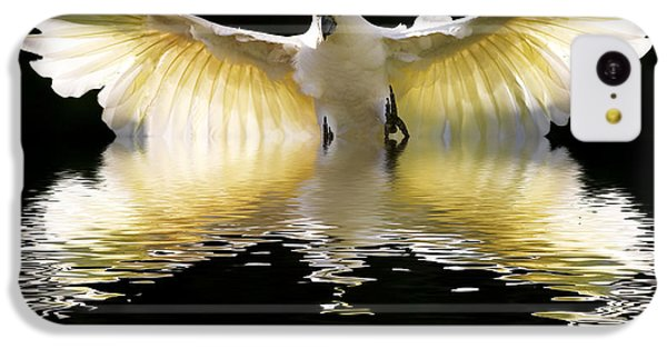 Cockatoo iPhone 5c Case - Sulphur Crested Cockatoo Rising by Sheila Smart Fine Art Photography
