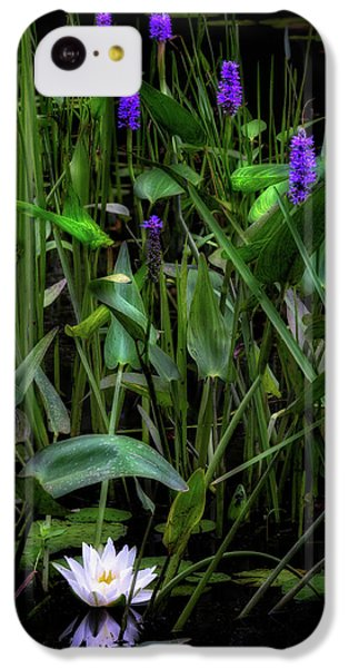 IPhone 5c Case featuring the photograph Summer Swamp 2017 by Bill Wakeley
