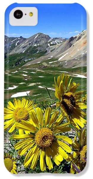 Summer Tundra IPhone 5c Case by Karen Shackles