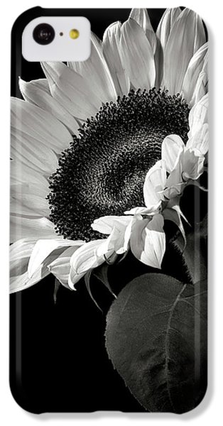 Sunflower iPhone 5c Case - Sunflower In Black And White by Endre Balogh