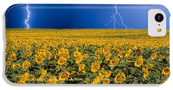 Sunflower iPhone 5c Case - Sunflower Lightning Field  by James BO  Insogna