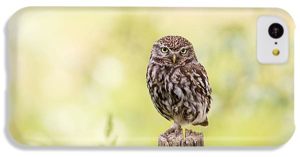 Sunken In Thoughts - Staring Little Owl IPhone 5c Case by Roeselien Raimond