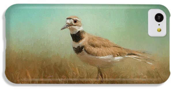 Killdeer iPhone 5c Case - Sunny Day Stroll by Jai Johnson