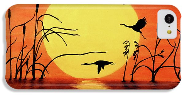 Sunset Geese IPhone 5c Case