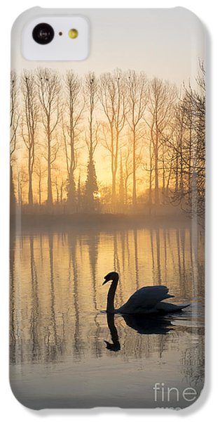 Swan Lake IPhone 5c Case