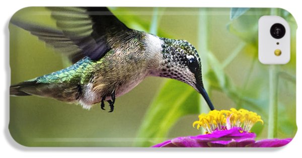 Sweet Success Hummingbird Square IPhone 5c Case