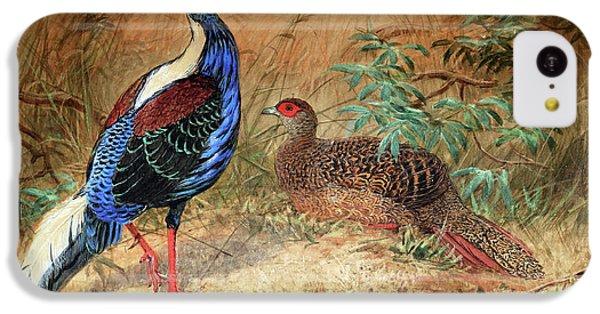 Swinhoe's Pheasant  IPhone 5c Case