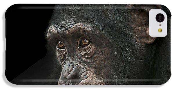 Chimpanzee iPhone 5c Case - Tedium by Paul Neville
