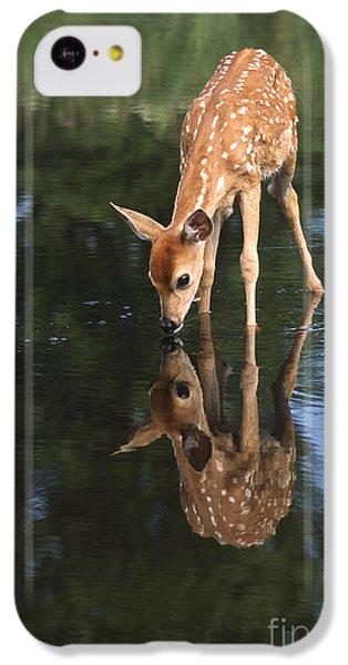 Deer iPhone 5c Case - That Must Be Me by Sandra Bronstein