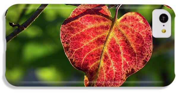 IPhone 5c Case featuring the photograph The Autumn Heart by Bill Pevlor