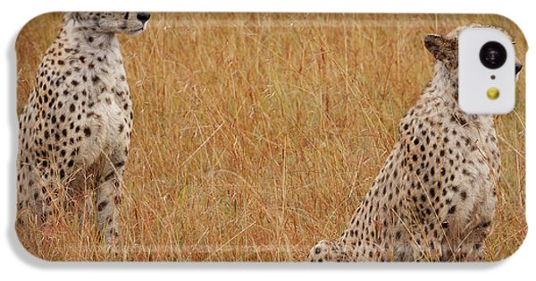 The Cheetahs IPhone 5c Case
