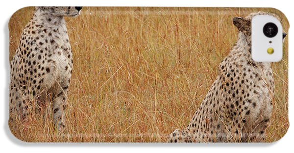 The Cheetahs IPhone 5c Case by Nichola Denny