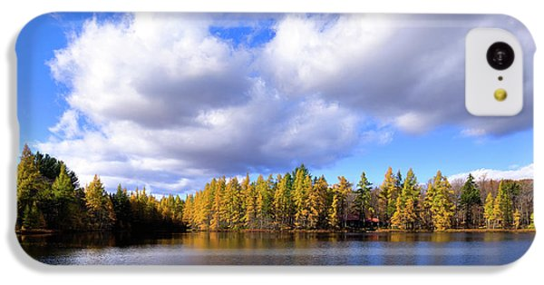 IPhone 5c Case featuring the photograph The Golden Forest At Woodcraft by David Patterson
