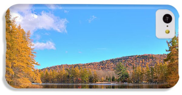 IPhone 5c Case featuring the photograph The Golden Tamaracks Of Woodcraft Camp by David Patterson
