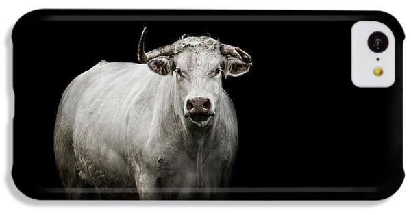 Bull iPhone 5c Case - The Guardian by Paul Neville