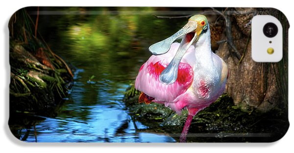 The Happy Spoonbill IPhone 5c Case by Mark Andrew Thomas