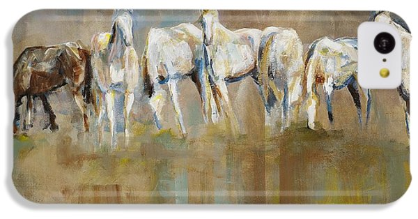 Horse iPhone 5c Case - The Horizon Line by Frances Marino