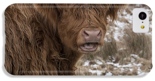 The Laughing Cow, Scottish Version IPhone 5c Case