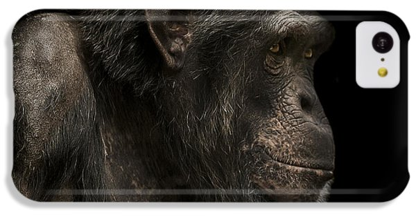 Chimpanzee iPhone 5c Case - The Listener by Paul Neville