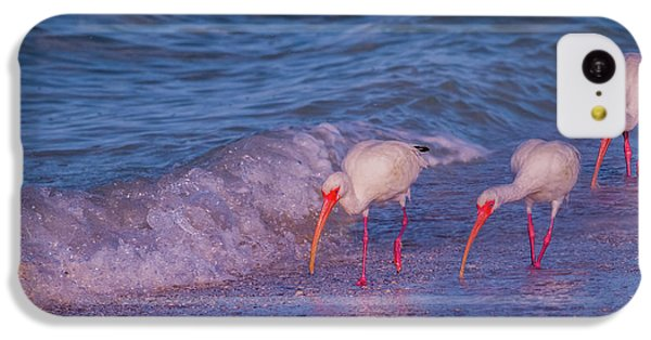Ibis iPhone 5c Case - The Locals by Betsy Knapp