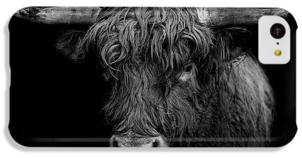Bull iPhone 5c Case - The Monarch by Paul Neville