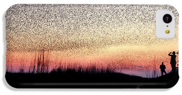 Starlings iPhone 5c Case - The Murmuration Makers by Roeselien Raimond