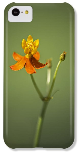 The One - Asclepias Curassavica - Butterfly Milkweed IPhone 5c Case by Johan Hakansson
