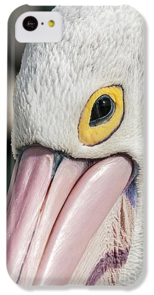 The Pelican Look IPhone 5c Case by Werner Padarin