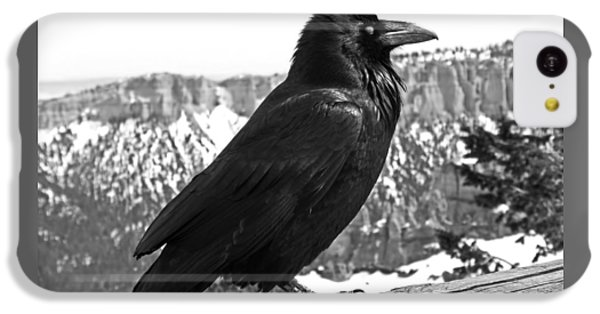 The Raven - Black And White IPhone 5c Case