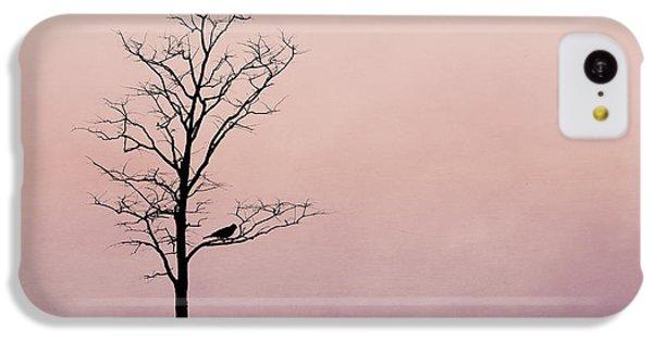 The Serenade IPhone 5c Case by Tom Mc Nemar