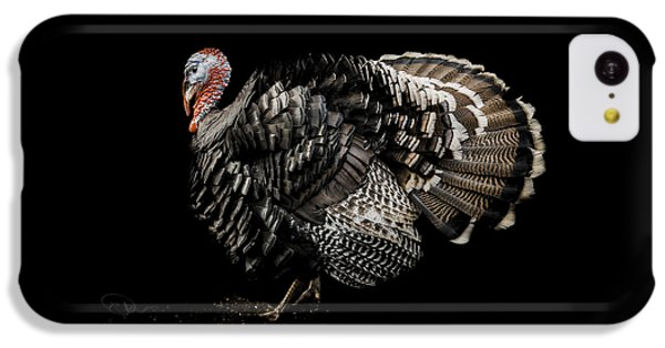 Turkey iPhone 5c Case - The Showman by Paul Neville