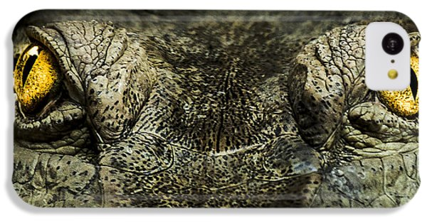 Crocodile iPhone 5c Case - The Soul Searcher by Paul Neville