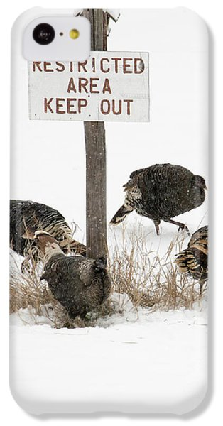 The Turkey Patrol IPhone 5c Case by Mike Dawson