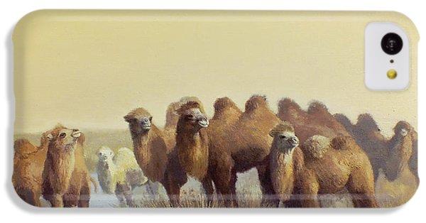 The Winter Of Desert IPhone 5c Case by Chen Baoyi