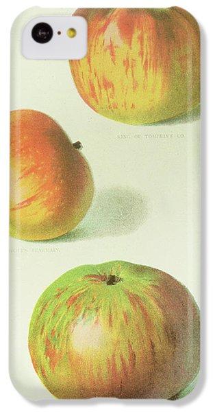 Three Apples IPhone 5c Case