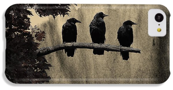 Starlings iPhone 5c Case - Three Ravens Branch Out by Gothicrow Images